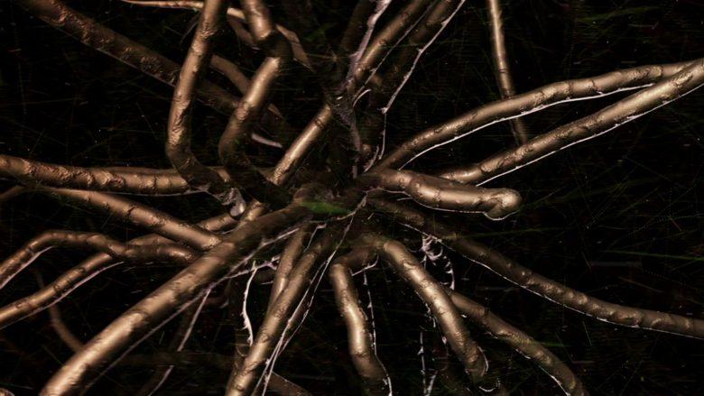 herpes virus growing inside the body